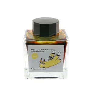 ボトルインク キングダムノート別注 日本の生物シリーズ 「ウミウシ」 ウデフリツノザヤウミウシ 50ml