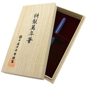 NAKAYA 中屋万年筆 万年筆 シガーモデル ポータブル 桔梗 軟中字 (ロジウムペン先) メイン
