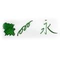 ROHRER & KLINGNER ローラー&クライナー ボトルインク ヴァーデュア 50ml 1