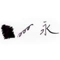 ROHRER & KLINGNER ローラー&クライナー ボトルインク スカビオサ(没食子インク) 50ml 1