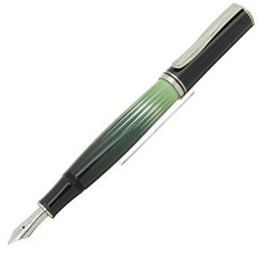 万年筆 自然の美観シリーズ M640 ポーラーライト M